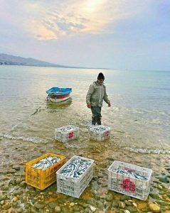ماهیگیری -ساحلبنگسار-سیراف/تصاویر