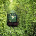 عکس های زیبا و رویایی از تونل عشق در اوکراین برای قدم زدن های عاشقانه و رمانتیک