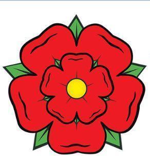 تصویر از دانلود وکتور گل رز قرمز و صورتی، سفید و مشکی، زرد و آبی