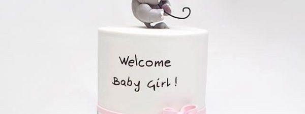 جدیدترین انواع مدل کیک تولد دخترانه با طرحهای خاص