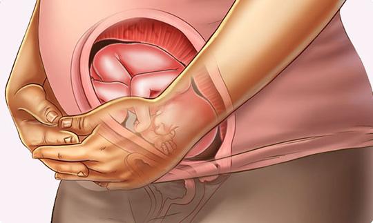 فعال شدن حس لامسه از هفته بیست و دوم بارداری