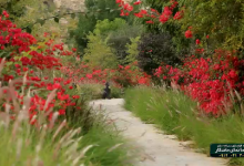 دانلود کلیپ زیبا و دیدنی از دره لیر سیراف/فیلم