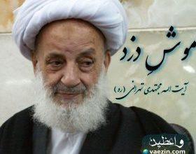 """تصویر از دانلود سخنرانی آیت الله مجتهدی تهرانی """"موش دزد"""" آنلاین"""