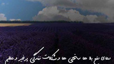 تصویر از دعای دفع بلا ها سختی ها و مشکلات زندگی پرخیر و عظیم
