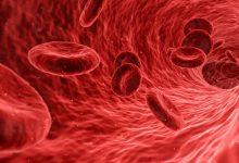 تصویر از همه چیز درباره گروه خونی O+
