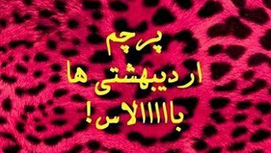 تصویر از عکس پروفایل اردیبهشت ماهی 98 + متن های اردیبهشتی 1398