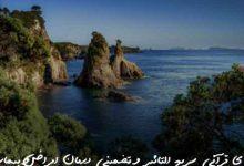 تصویر از دعای قرآنی سریع التاثیر و تضمینی درمان امراض و بیماریها