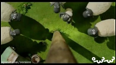 تصویر از کارتون Operation pidsley – Shaun the sheep