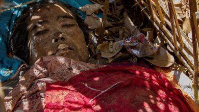 مردگان در بالی در هوای آزاد رها میشوند