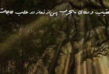 تعقیب و دعای مجرب پس از نماز در طلب حاجات
