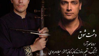 تصویر از دانلود آهنگ لری دشت شوق از بردیا مهر آرا + متن ترانه
