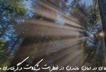 تصویر از دعای در امان ماندن از خطرات مشکلات و گرفتاری ها