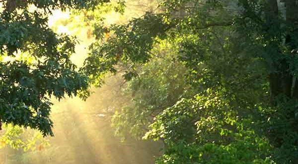 دعای مجرب برای شفای درد ها و بیماری های سخت