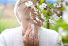 تصویر از چرا فقط برخی افراد از آلرژی رنج می برند