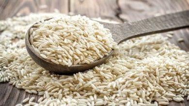 تصویر از کالری برنج؛ هر ۱۰۰ گرم برنج چقدر کالری دارد؟