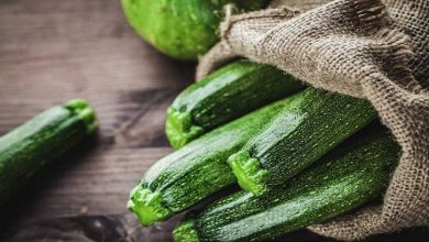 انواع غذا با کدو سبز