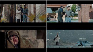 تصویر از دانلود موزیک ویدیو حلالم کن (تیتراژ فیلم ژن خوک) از محسن چاوشی