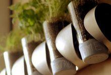 تصویر از آموزش ساخت گلدان دیواری برای کاشت سبزی