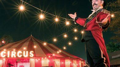 تصویر از تعبیر خواب سیرک – معنی دیدن سیرک در خواب