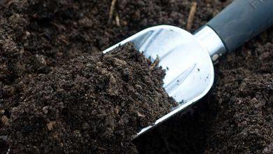 خاک soil