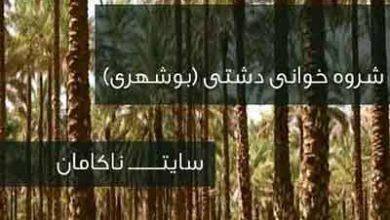 تصویر از دانلود شروه دشتی خبر آمد که دشتستان بهاره از ابراهیم خشیج (فایزخوانی صوتی) mp3