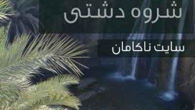تصویر از دانلود شروه دشتی سر زلف تو جانا لام و میم استاز ابراهیم خشیج (فایل صوتی mp3)