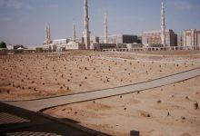 تصویر از زندگینامه امام حسن مجتبی (ع) و گذری به زندگی آن حضرت