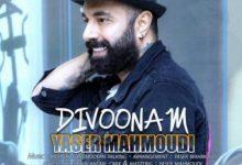 دانلود آهنگ احساسی یاسر محمودی به نام دیوونم /سایت شاداب موزیک