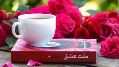 تصویر از کتاب ملت عشق – روایت الیف شافاک از داستان شمس و مولانا را بشنوید