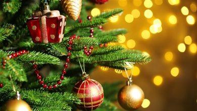 تصویر از نقاشی درخت کریسمس؛ طرحهایی زیبا و متنوع