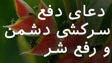 تصویر از دعای دفع سرکشی دشمن و رفع شر