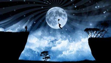 تصویر از پرواز کردن در خواب به چه معناست؟ تعبیر خواب پرواز