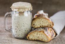 طرز تهیه خمیر ترش خانگی و شرایط نگهداری از آن (روش تغذیه کردن خمیر ترش)