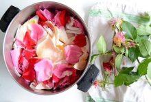 تصویر از گلاب گیری در خانه با استفاده از لوازم خانگی با دو روش آسان