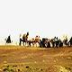 تصویر از قیام سیدالشهدا (سلام الله علیه)، حرکتی آگاهانه برای نجات دین