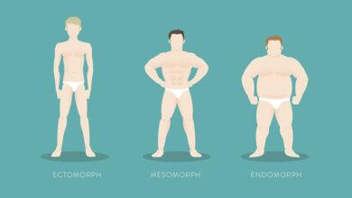 انواع تیپ بدنی در بدنسازی (اکتومورف، اندومورف و یا مزومورف)