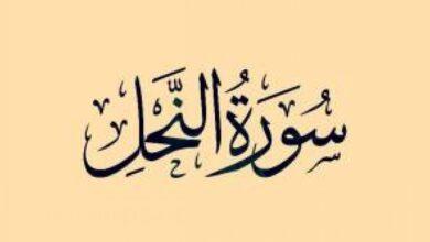 خواص سوره نحل به نقل از ائمه معصومین(ع)