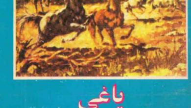 تصویر از دانلود رمان یاغی (یاشار کمال)/PDF