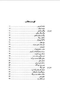 tags - 3 1 204x300 - دانلود کتاب یوگای پاتنجلی/PDF - %