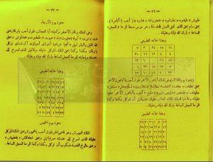 tags - 3 3 300x229 - دانلود کتاب المندل و الخاتم السلیمانی/PDF - %