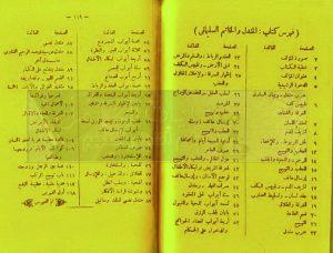 tags - 6 2 300x228 - دانلود کتاب المندل و الخاتم السلیمانی/PDF - %