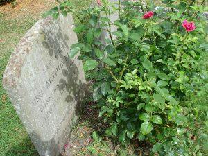 tags - George Orwell Grave 300x225 - دانلود رمان 1984 | صوتی + PDF - %