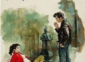 دانلود کتاب خاطرات مرد مجرد/pdf❤️